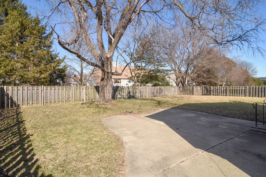 Real Estate Photography - 3241 N. Volz Drive, Arlington Heights, IL, 60004 - Back Yard