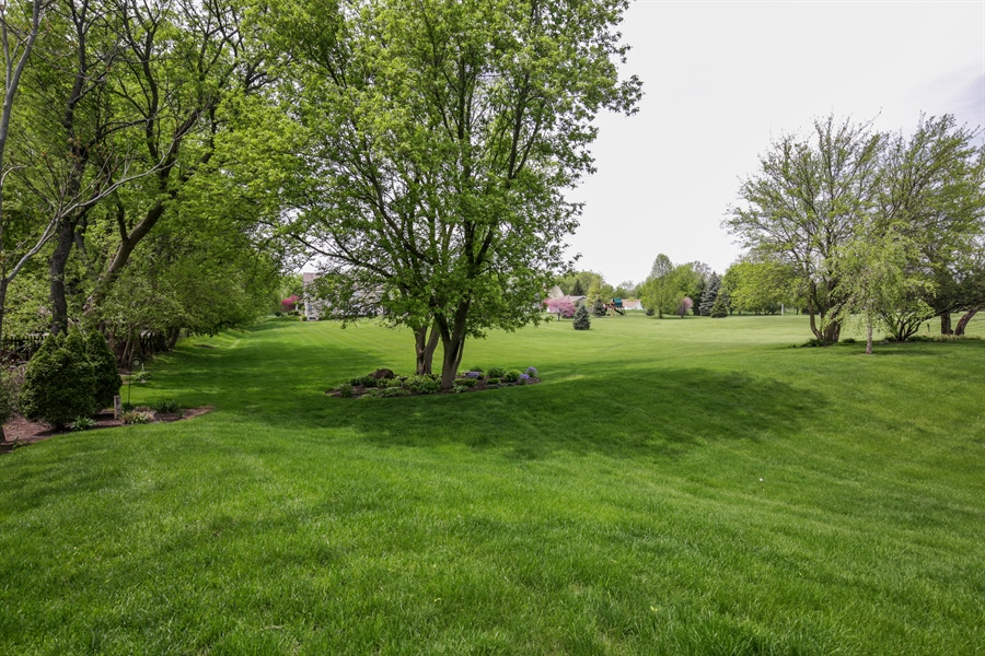 Real Estate Photography - 2811 Skyline Drive, Crystal Lake, IL, 60012 - Back Yard