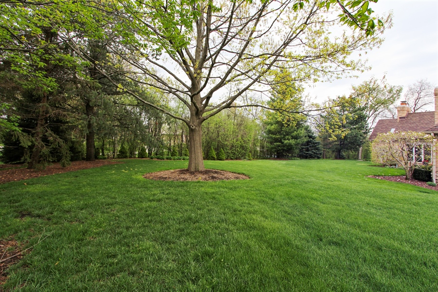 Real Estate Photography - 9 Wescott Drive, South Barrington, IL, 60010 - Back Yard