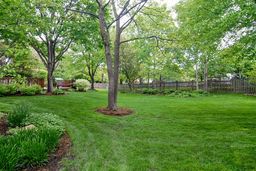 Real Estate Photography - 1536 Meadowland Drive, Naperville, IL, 60540 - Back Yard
