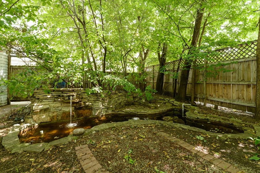 Real Estate Photography - 7463 N. Sheridan Road, Chicago, IL, 60626 - Back Yard