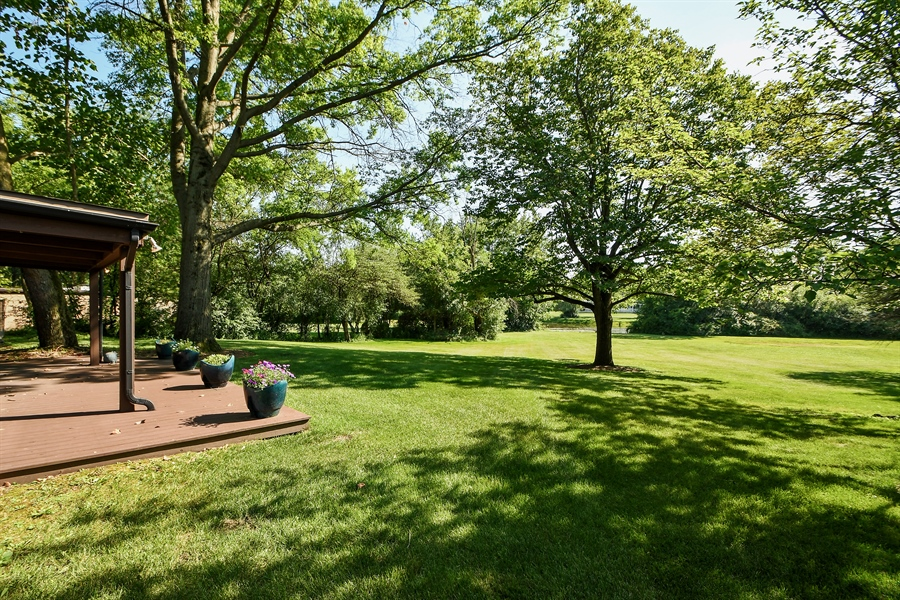 Real Estate Photography - 98 Graymoor Lane, Olympia Fields, IL, 60461 - Back Yard