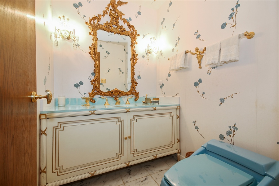 Real Estate Photography - 69 Graymoor Lane, Olympia Fields, IL, 60461 - Powder Room