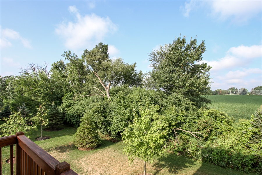 Real Estate Photography - 1098 Piccolo Lane, Volo, IL, 60073 - View