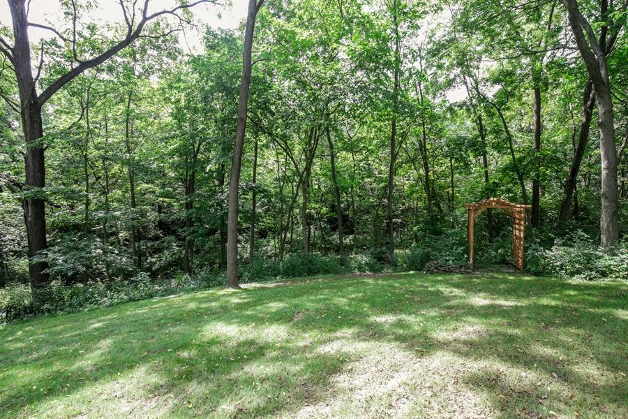 Real Estate Photography - 732 Hillside Court, Algonquin, IL, 60102 - Back Yard