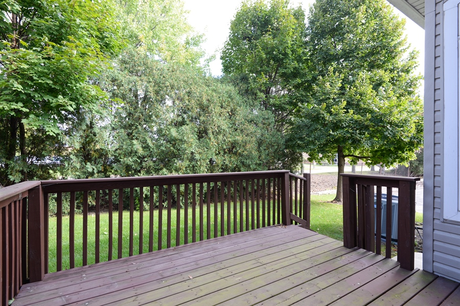 Real Estate Photography - 13259 W. Heiden Circle, Lake Bluff, IL, 60044 - Back Yard