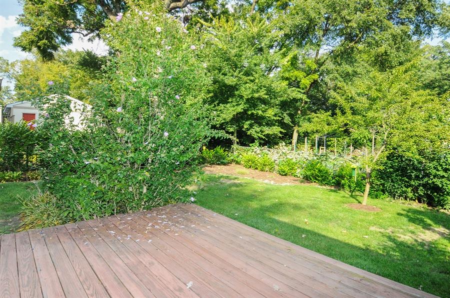 Real Estate Photography - 437 Carleton Avenue, Glen Ellyn, IL, 60137 - Back Yard