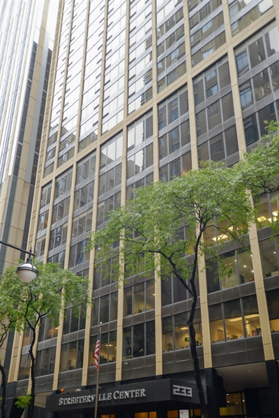Real Estate Photography - 233 E. Erie Street, Unit 1110, Chicago, IL, 60611 - Front View