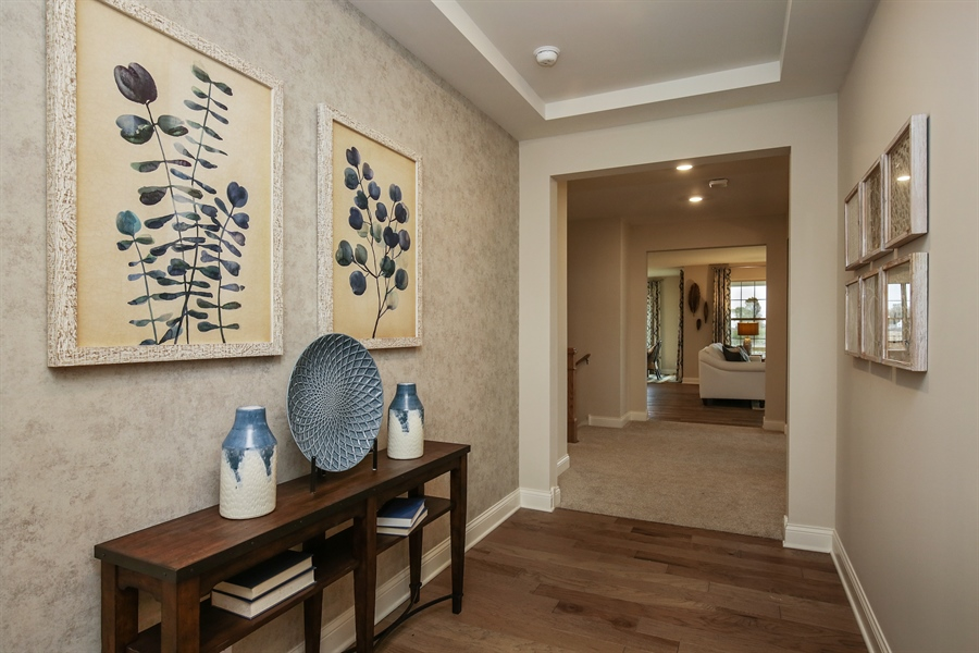 Real Estate Photography - 1027 Mayhaw Drive, Crystal Lake, IL, 60012 - Foyer