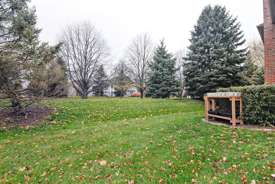 Real Estate Photography - 961 Waterside Court, Aurora, IL, 60502 - Back Yard