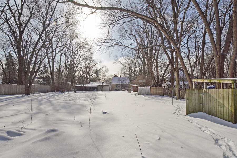 Real Estate Photography - 1418 E. Olive Street, Arlington Heights, IL, 60004 - Rear View