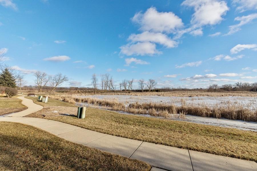 Real Estate Photography - 361 S. Litchfield Drive, Unit 361, Round Lake, IL, 60073 - Back Yard