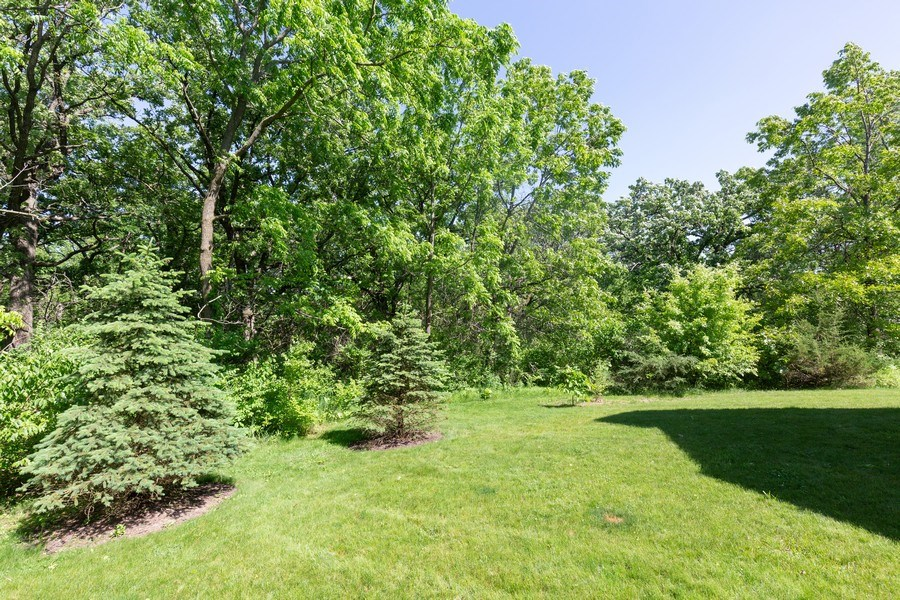 Real Estate Photography - 6503 Sycamore Court, Mchenry, IL, 60050 - Back Yard