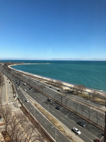 Real Estate Photography - 1120 N. LAKE SHORE Drive, Unit 12B, Chicago, IL, 60611 - View