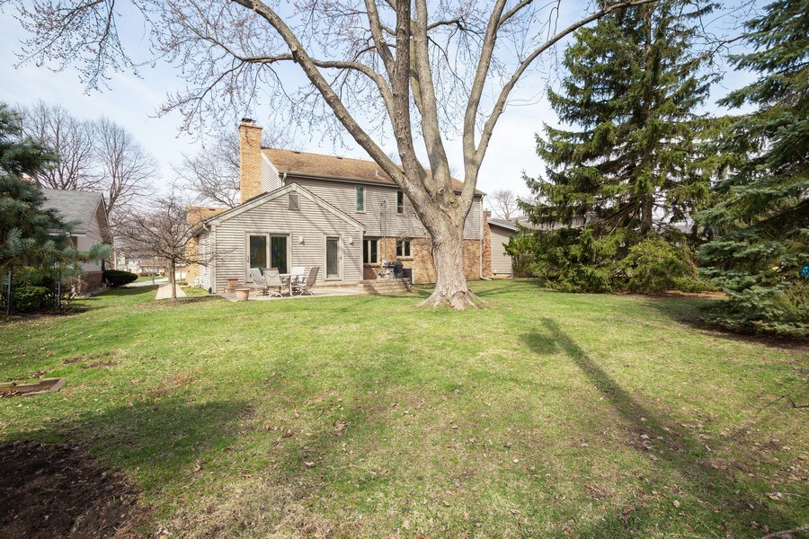 Real Estate Photography - 115 N. HARVARD Avenue, Arlington Heights, IL, 60005 - Rear View