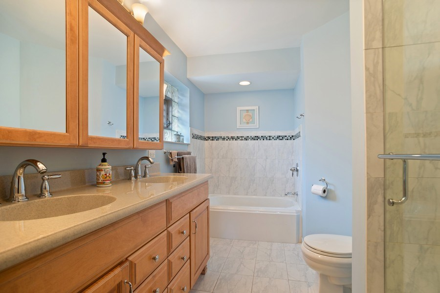 Real Estate Photography - 112 Wisner Street, Park Ridge, IL, 60068 - Master Bathroom