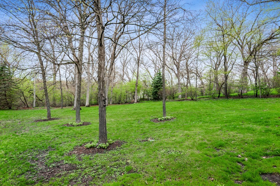 Real Estate Photography - 6809 Normandy Drive, Spring Grove, IL, 60081 - Backyard View