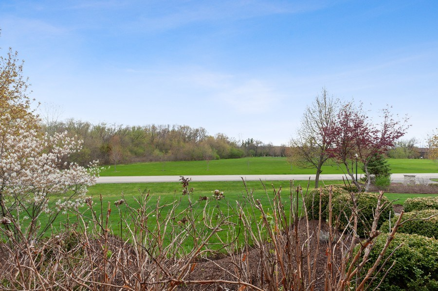 Real Estate Photography - 39716 Orchard Bluff Lane, Wadsworth, IL, 60083 - Front View