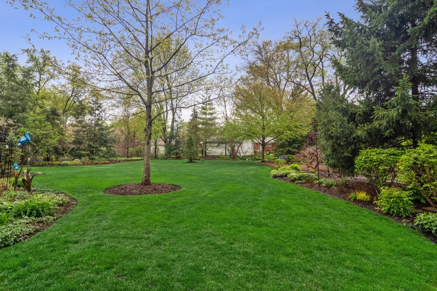 Real Estate Photography - 916 N. Forrest Avenue, Arlington Heights, IL, 60004 - Deep yard featuring extensive landscaping