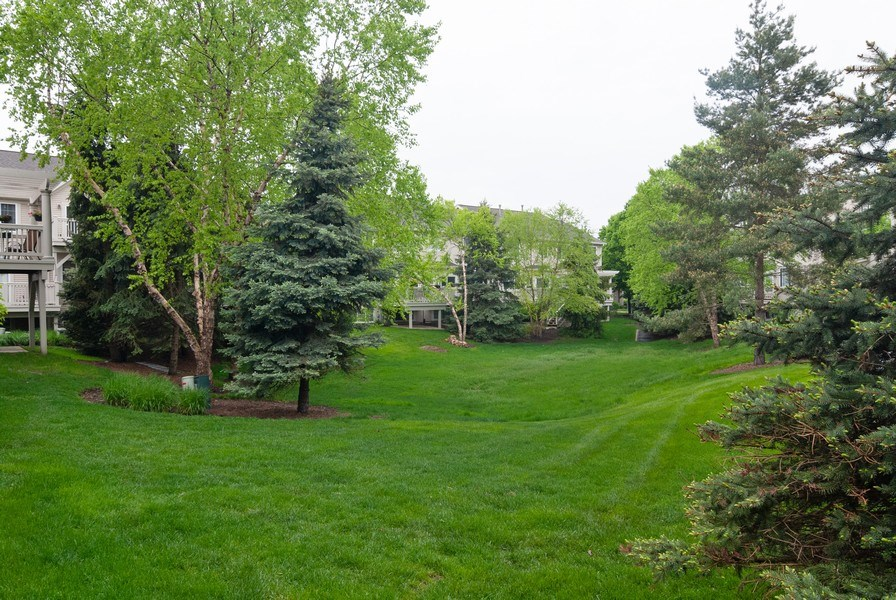 Real Estate Photography - 1236 Townes Circle, Aurora, IL, 60502 - Back Yard