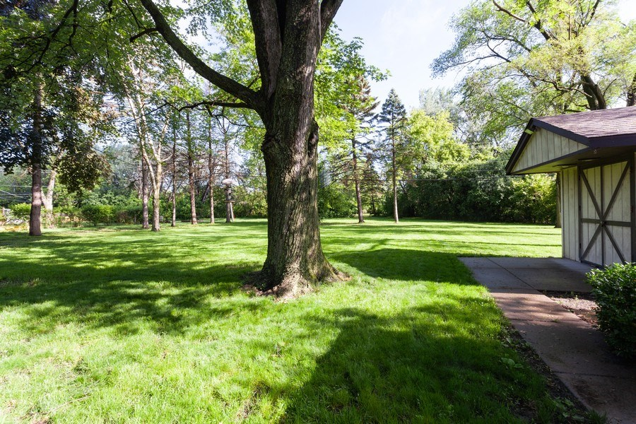 Real Estate Photography - 620 67th Place, Willowbrook, IL, 60527 - Back Yard