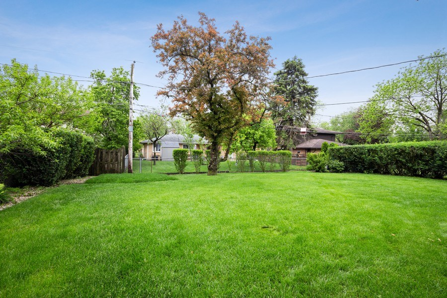 Real Estate Photography - 557 Dulles Road, Des Plaines, IL, 60016 - Back Yard