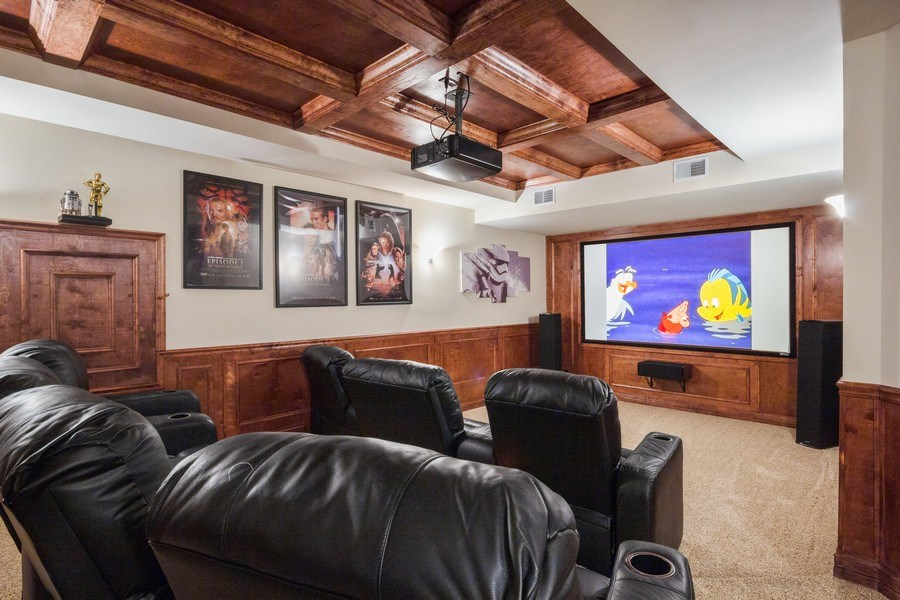 Real Estate Photography - 12900 Peppertree Drive, Plainfield, IL, 60585 - Theatre