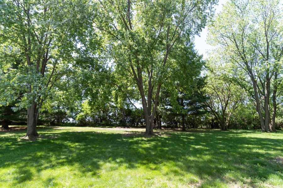 Real Estate Photography - 79 Highview Drive, Yorkville, IL, 60560 - Back Yard