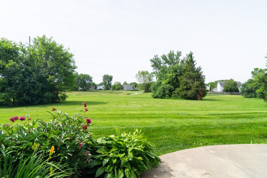 Real Estate Photography - 1125 Sausalito Court, Bartlett, IL, 60103 - Back Yard