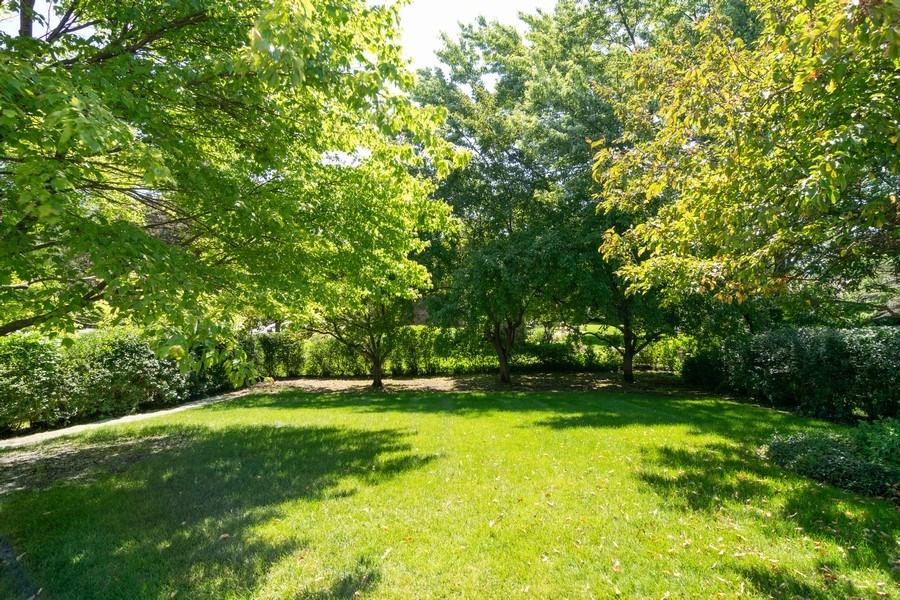 Real Estate Photography - 501 S. Brighton Lane, Palatine, IL, 60067 - Back Yard