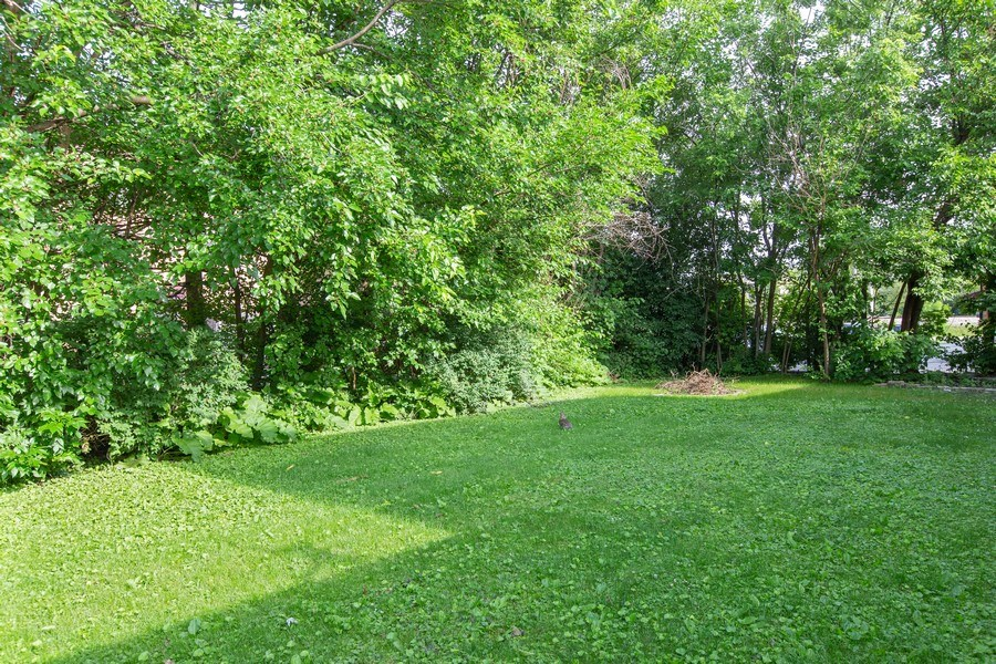 Real Estate Photography - 17538 70th Court, Tinley Park, IL, 60477 - Back Yard