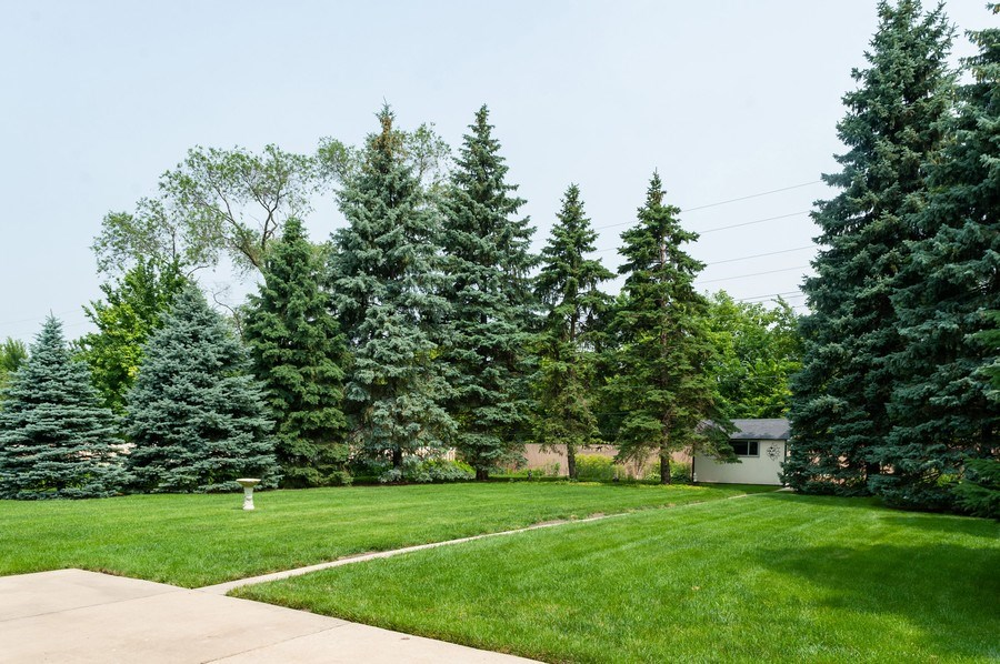 Real Estate Photography - 1212 W. Vine Street, Arlington Heights, IL, 60005 - Back Yard