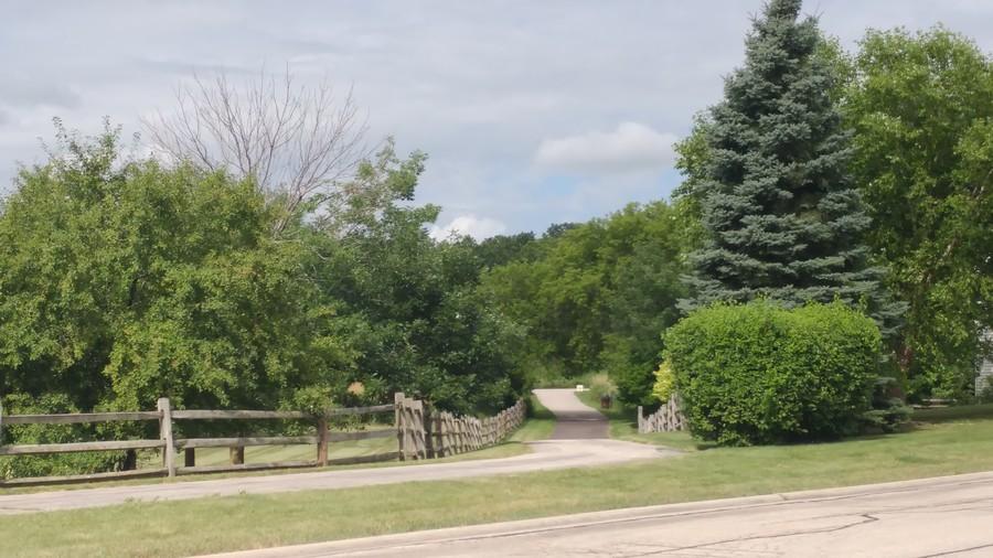 Real Estate Photography - 33 Bridlepath Drive, Lindenhurst, IL, 60046 - Nature path