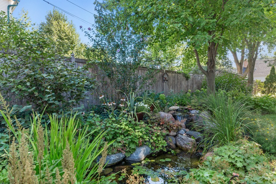 Real Estate Photography - 133 Barrypoint Rd, Riverside, IL, 60546 - Koi Pond