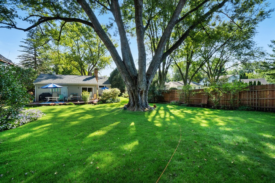 Real Estate Photography - 756 South Summit St, Barrington, IL, 60010 - Rear View