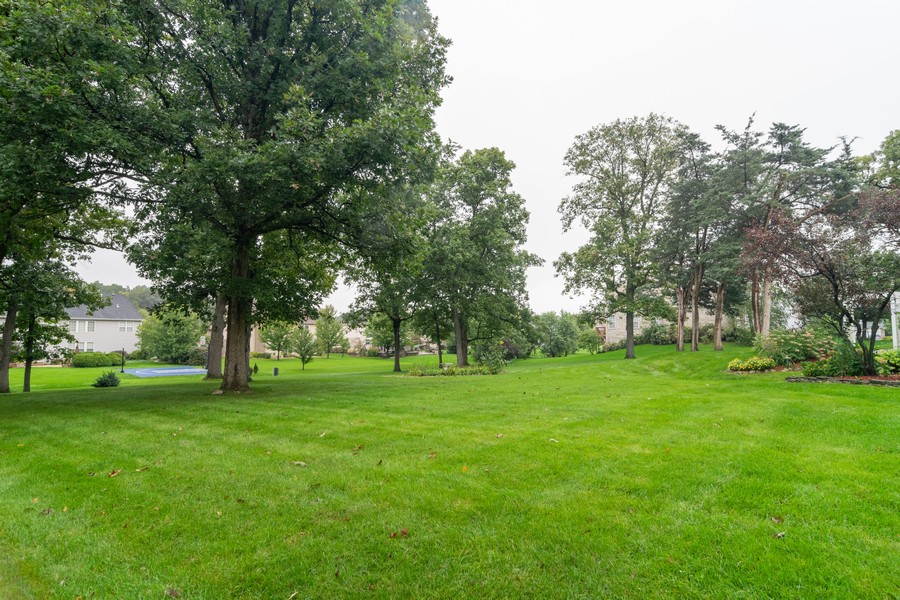 Real Estate Photography - 416 Chara Ct, Bartlett, IL, 60103 - Side Yard