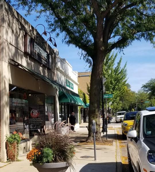 Real Estate Photography - 1142 Chicago Ave, Oak Park, IL, 60302 -