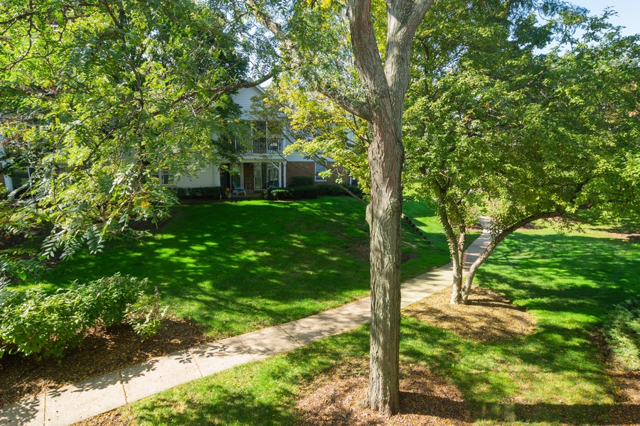 Real Estate Photography - 1007 Butternut Ln, C, Mount Prospect, IL, 60056 - View