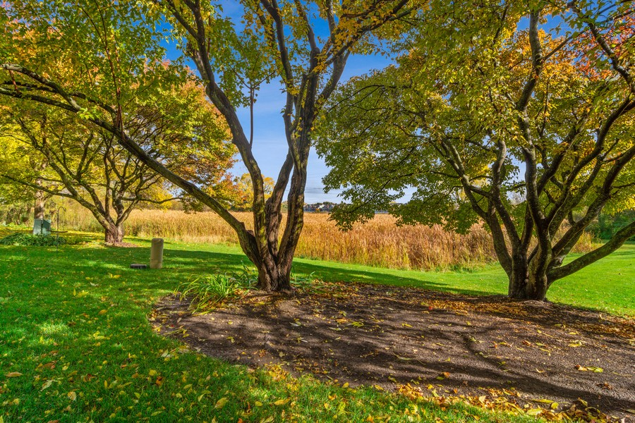 Real Estate Photography - 583 North Charter Hall Dr, Palatine, IL, 60067 - Back Yard