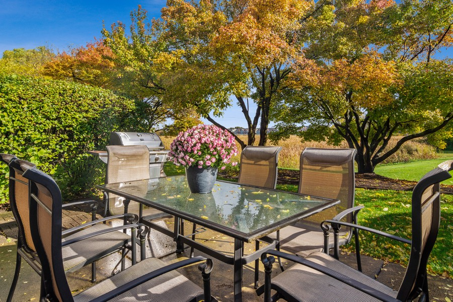 Real Estate Photography - 583 North Charter Hall Dr, Palatine, IL, 60067 - Patio