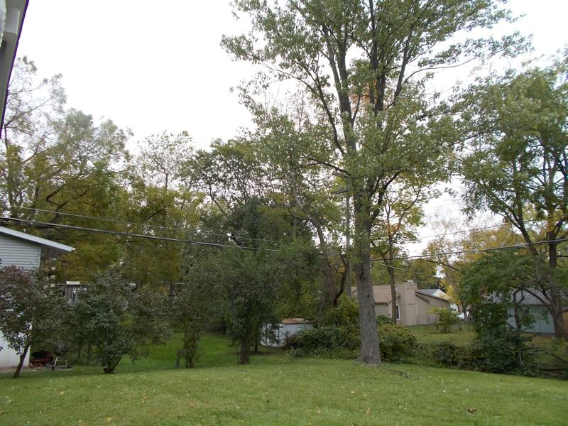Real Estate Photography - 309 Knollwood Dr, Dekalb, IL, 60115 - Back Yard