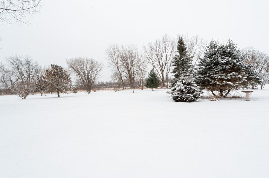 Real Estate Photography - 8807 Regnier Rd, Hebron, IL, 60034 - Back Yard