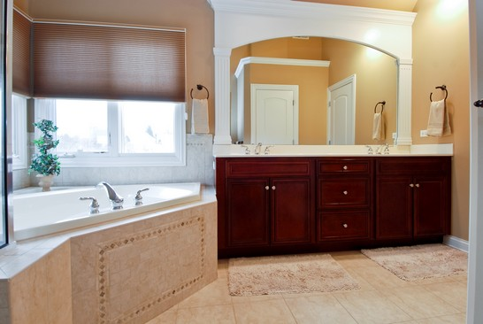 Master Bathroom photograph of 40W363 Edna St Vicent Mill St Charles Illinois 60175