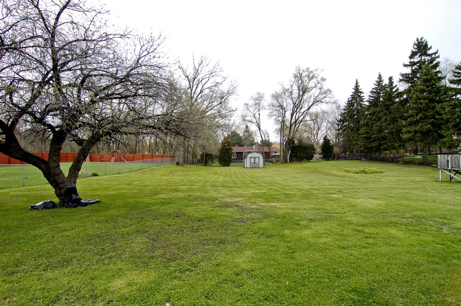 Real Estate Photography - 115 60th, Downers Grove, IL, 60516 - Back Yard