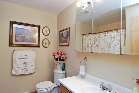 Bathroom photograph of 2610 20th North Chicago Illinois 60064