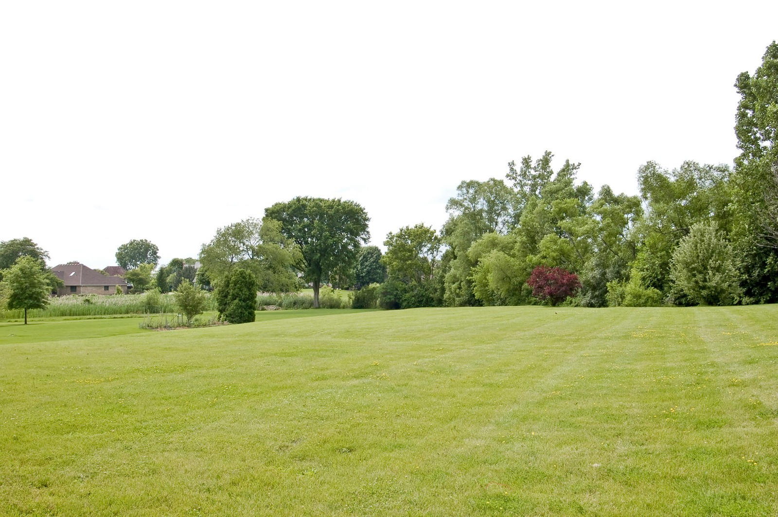 Real Estate Photography - 1S560 Verdun, Winfield, IL, 60190 - Rear View