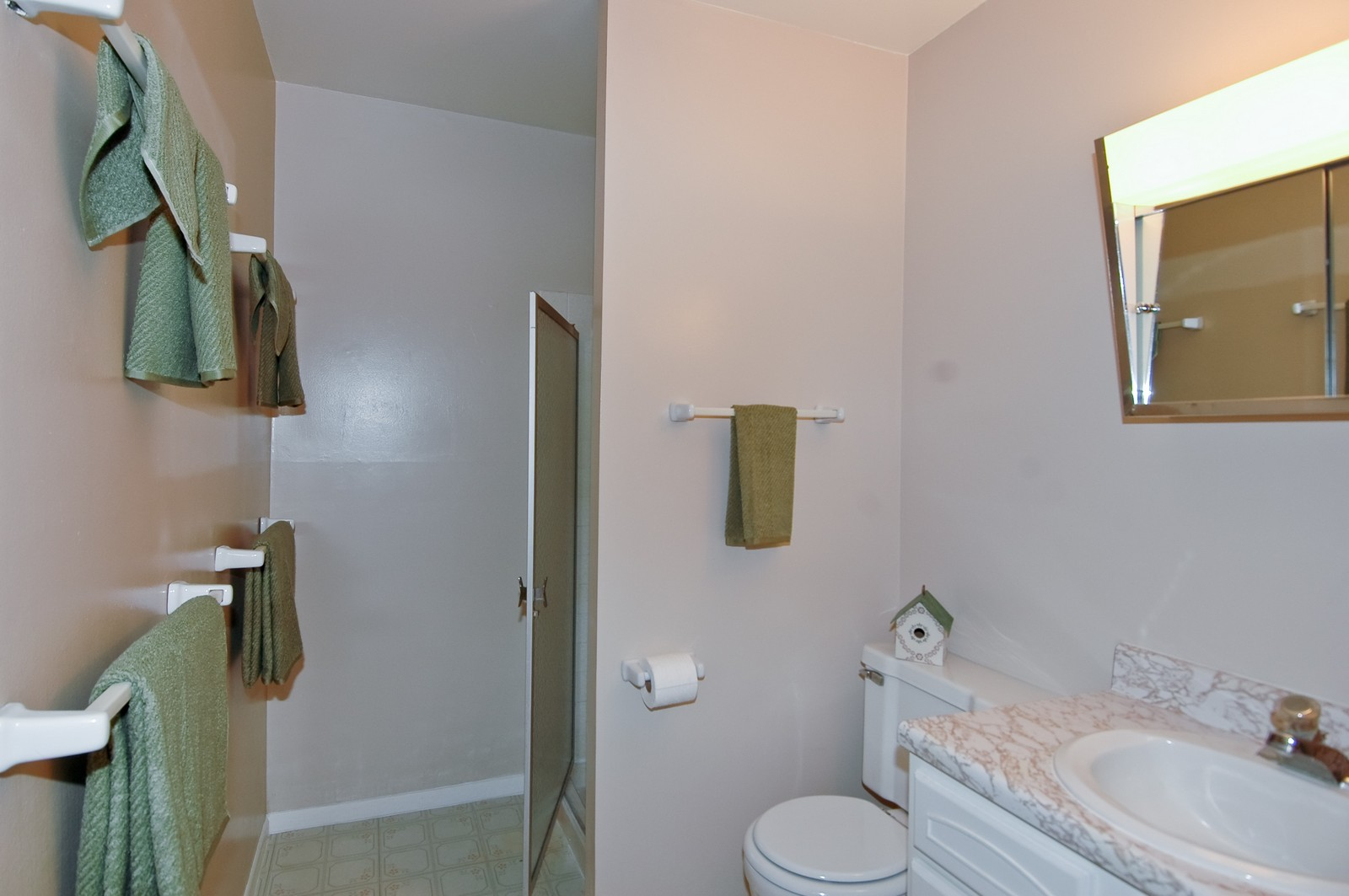 Real Estate Photography - 566 Somerset, Crystal Lake, IL, 60014 - Master Bathroom