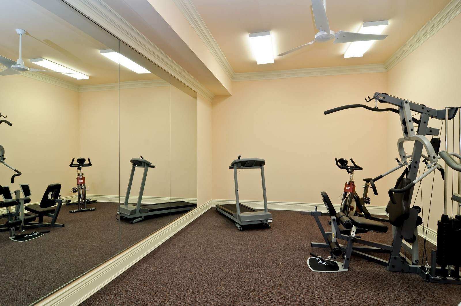 Real Estate Photography - 70 Dundee, Barrington Hills, IL, 60010 - Exercise Room
