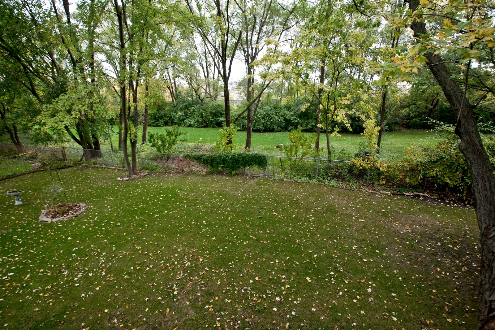 Real Estate Photography - 4402 Black Partridge, Lisle, IL, 60532 - Back Yard