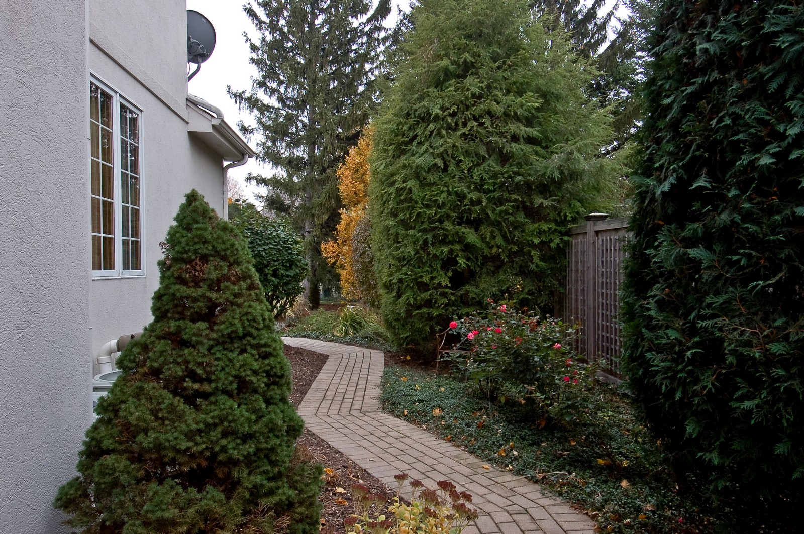 Real Estate Photography - 1492 Lloyd, Wheaton, IL, 60189 - Side yard walkway